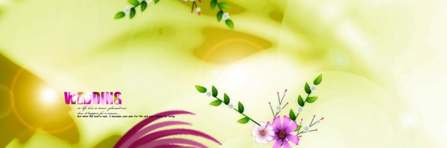 wedding karizma background psd file 33x11 download 02